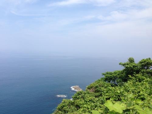 漁港めし_f0213410_12595702.jpg