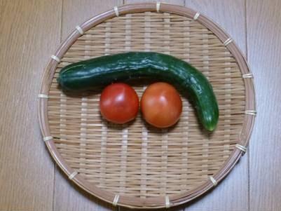 トマト初収穫_f0089748_18013800.jpg