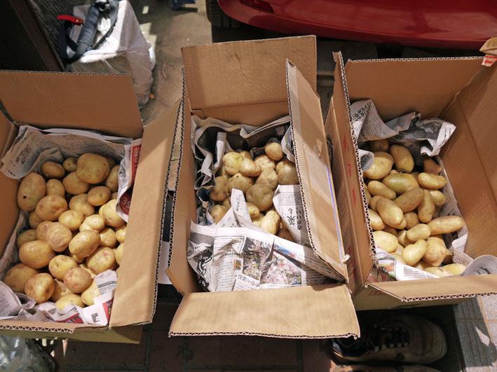 ジャガイモの保存に竹炭、タマネギには万能ネット袋使用_c0014967_758698.jpg