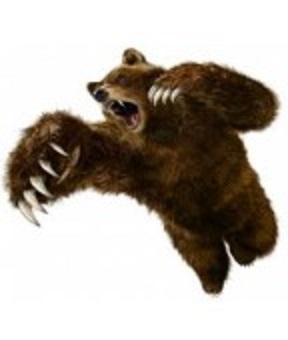 またまた 熊 出没 !_a0220570_1049214.jpg