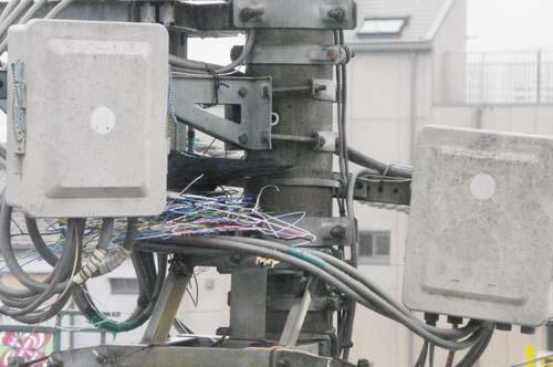 電柱の上で見たこと_f0211178_20343857.jpg