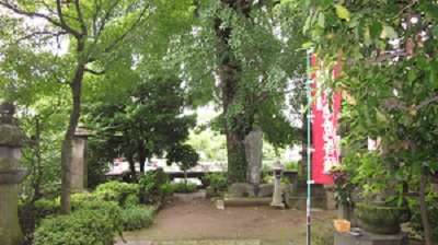 熊本駅の周りを回って来ました!_b0228113_17472392.jpg
