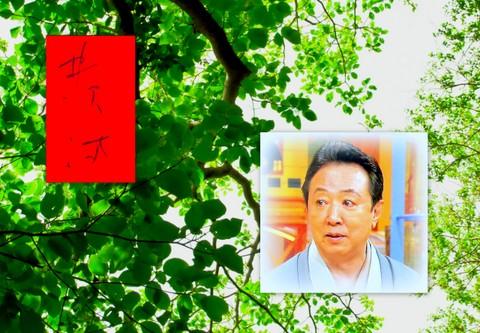 井沢満先生の着物への思い。。。_f0205317_23155831.jpg