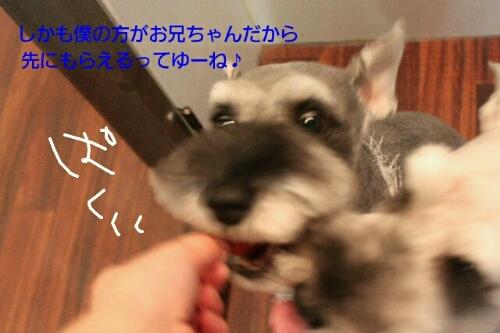 b0130018_9515764.jpg
