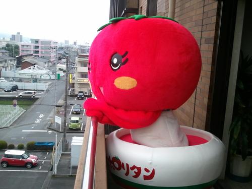6月22日 祝 富士山世界遺産登録1周年記念 「富士山カンパイ!」_b0093221_20374548.jpg