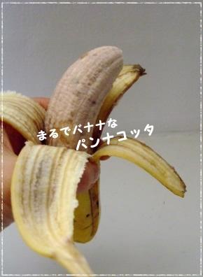e0141159_18591123.jpg