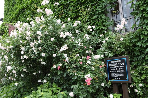 薔薇と洋館_a0141072_22282070.jpg