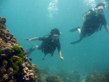 体験ダイビングに初挑戦!!_f0144385_13275567.jpg