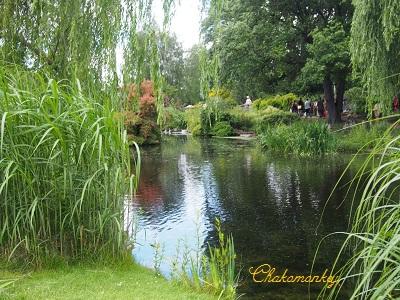お弁当を持ってQueen Mary\'s Rose Gardenへ_f0238789_2092848.jpg