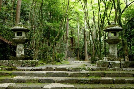 栂ノ尾高山寺 緑したたる_e0048413_20262031.jpg