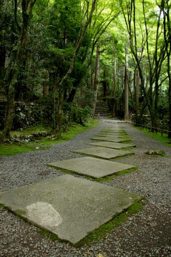 栂ノ尾高山寺 緑したたる_e0048413_20272981.jpg