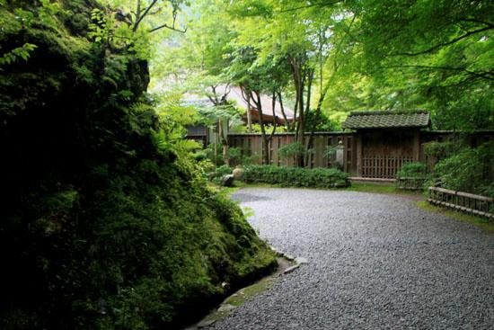 栂ノ尾高山寺 緑したたる_e0048413_20274694.jpg