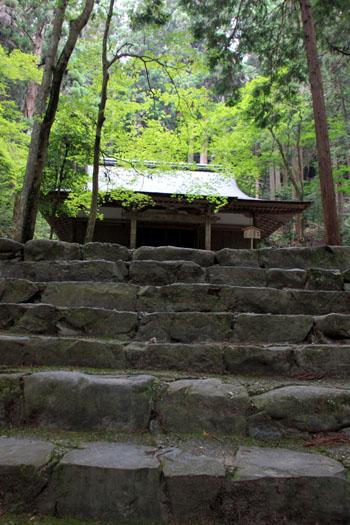 栂ノ尾高山寺 緑したたる_e0048413_2027518.jpg