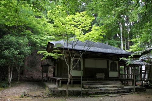 栂ノ尾高山寺 緑したたる_e0048413_20283494.jpg