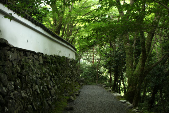栂ノ尾高山寺 緑したたる_e0048413_20285892.jpg