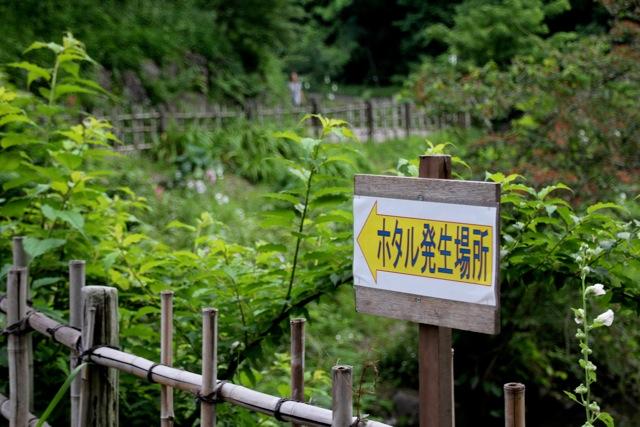 【四季の森公園】part 1_f0348831_21125841.jpg