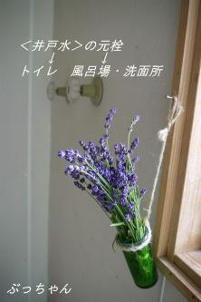 f0353990_16352943.jpg