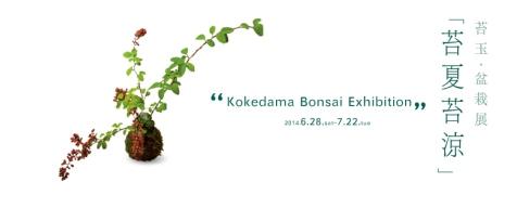 本日のKitowa_d0263815_17154174.jpg