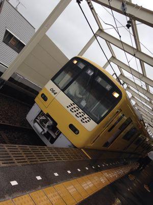 幸せの黄色い電車_f0290135_231539.jpg