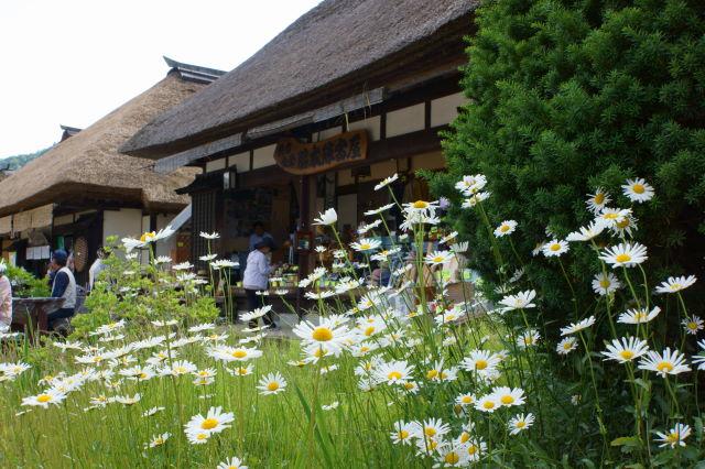 お花の咲く宿場町_a0257652_18141296.jpg