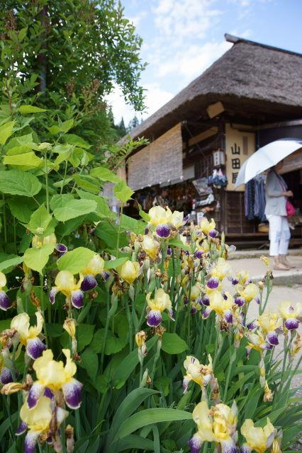 お花の咲く宿場町_a0257652_18462380.jpg