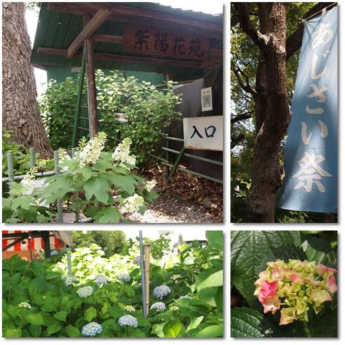 藤森神社@京都_d0078486_83367.jpg