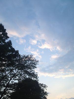 雨_e0239908_4232854.jpg