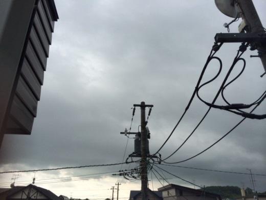 2014年6月22日(日):今日も雨が…[中標津町郷土館]_e0062415_1685028.jpg