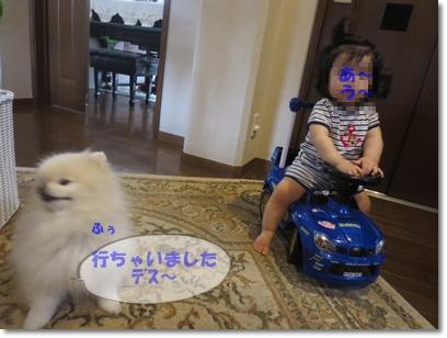 b0167519_0332077.jpg