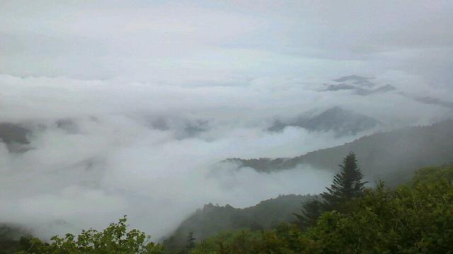 雨があがりかけ?雲海と言えば雲海です。気温12℃。午後1時半です。_c0089831_13363176.jpg