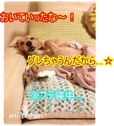 b0115642_2311949.jpg
