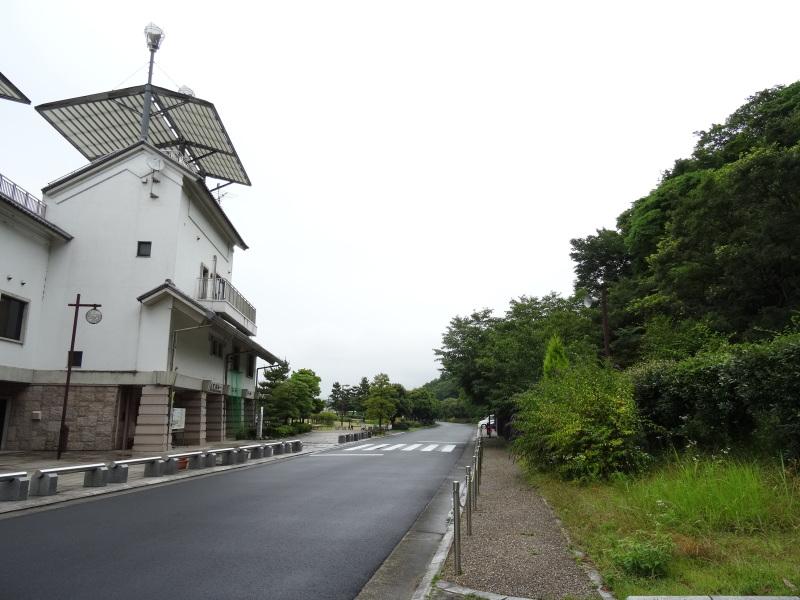 『せんなん里海さくらフェス2014』は今年もやります!!     by     (TATE-misaki)_c0108460_21551681.jpg