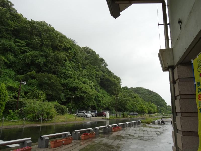 『せんなん里海さくらフェス2014』は今年もやります!!     by     (TATE-misaki)_c0108460_21551837.jpg