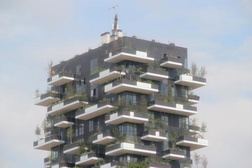 SKY140625 緑化されたビルは大きな木が天に向かって伸びている。_d0288367_14233395.jpg