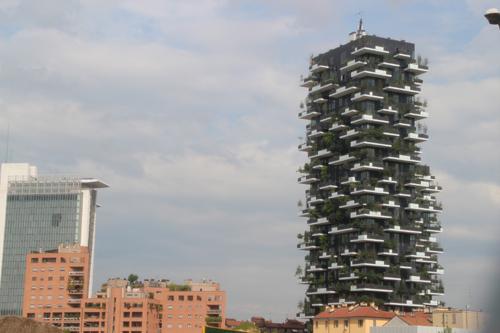 SKY140625 緑化されたビルは大きな木が天に向かって伸びている。_d0288367_14243640.jpg