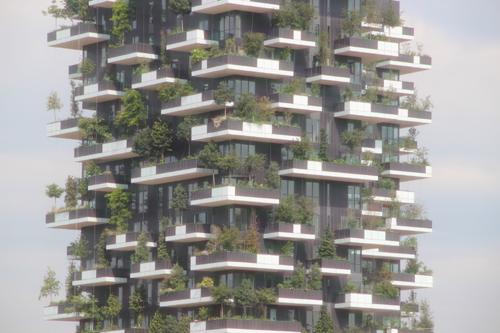 SKY140625 緑化されたビルは大きな木が天に向かって伸びている。_d0288367_1424649.jpg
