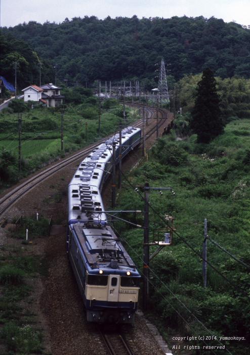 セノハチを駆け下りる臨時列車_d0309612_23311617.jpg