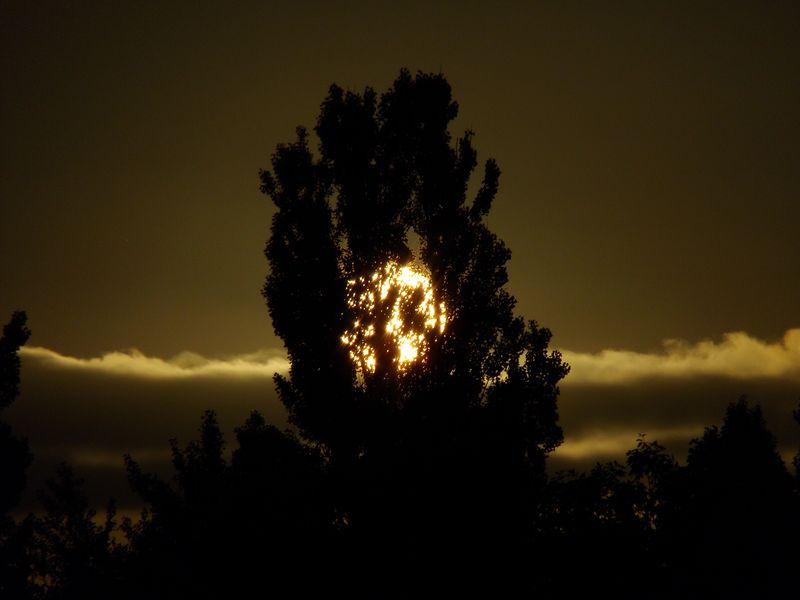 夏至2日後日没10分前_c0025115_1917024.jpg