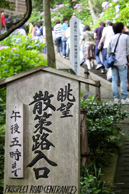 【長谷寺】鎌倉散策 part 1_f0348831_21020096.jpg