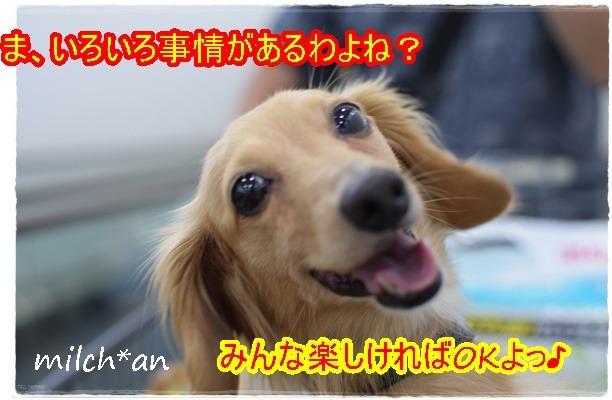 b0115642_23123172.jpg