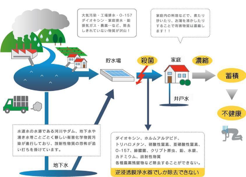 日本の水道水の現状_f0170778_1353729.jpg