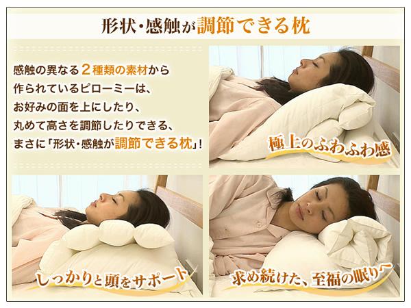 ダンフィルピローミー枕がテレビ放映でブレイク_d0063392_12155820.jpg