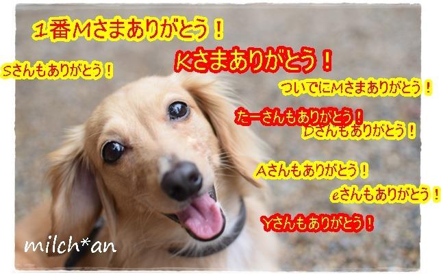 b0115642_22124618.jpg