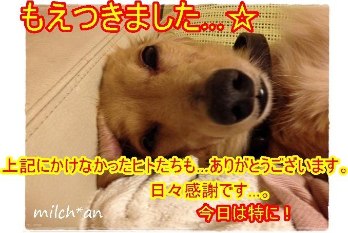 b0115642_22131452.jpg