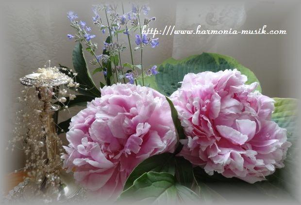 ピアノ指導☆考えを練る_d0165645_851651.jpg