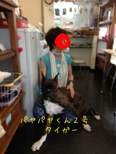f0177261_15595863.jpg