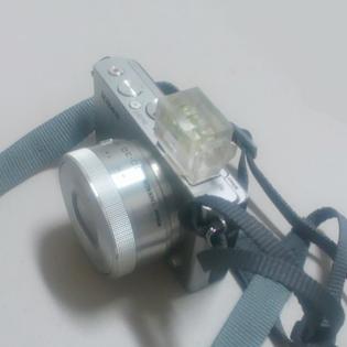 f0082301_1147357.jpg
