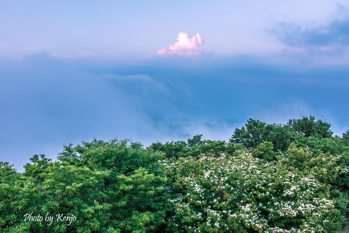 雲の上で夕涼み。。。_a0097006_18352090.jpg
