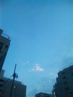 blog:吉祥寺末広通りのSOZAI屋さん_a0103940_19225394.jpg