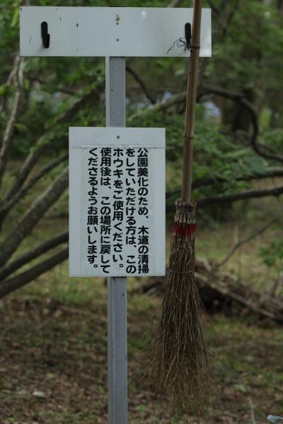 上三川 磯川緑地公園でアジサイ撮影会_e0227942_23084691.jpg